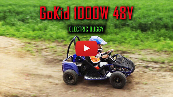 GoKid 1000w 48v Electric Buggy-Gokart in Action