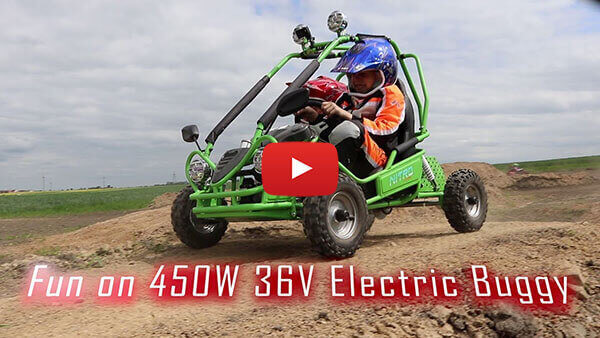 450W 36V Kids Electric Mini Buggy  Test ride video