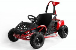 GoKid 1000W 48V - Electric Buggy - 4x12V 12Ah Batteries - Speed Restrictor