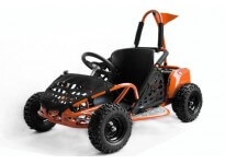 GoKid 1000W 48V Kids Electric Mini Buggy