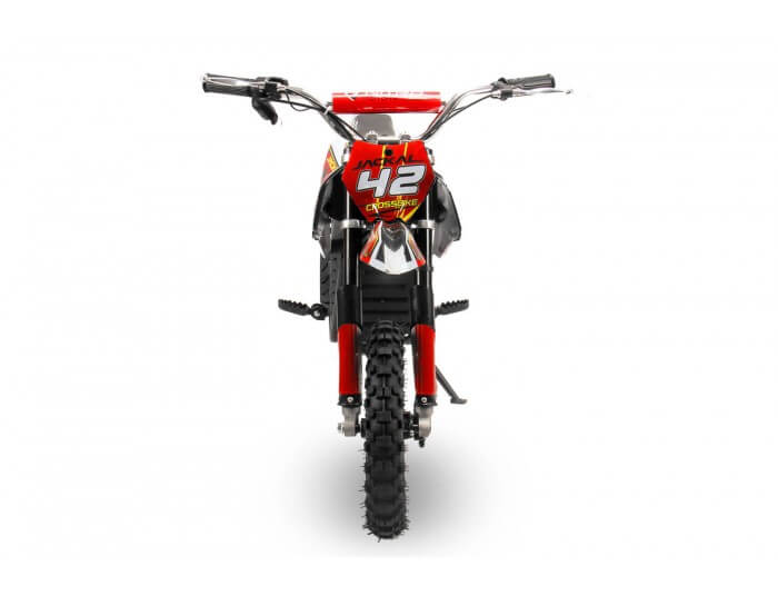 Jackal 1000W 36V Electric Dirt Bike Kids Motorbike