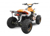 Panthera 3G8 125cc PETROL KIDS MIDI QUAD BIKE