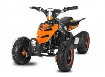 Repti Deluxe 800W 36V KIDS ELECTRIC QUAD BIKE