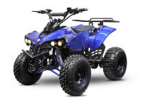 Warrior S8 1000W 48V XXL Kids Electric Quad Bike