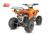 Warrior RG8 125cc Petrol Midi Quad Bike Automatic, 4 Stroke Engine, Electric Start, Nitro Motors