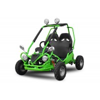 Buggy 750W 60V - Electric Buggy - 5x12V 20Ah Batteries - Speed Restrictor - Lights