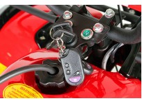 Toronto 3G8 RS 125cc PETROL KIDS MIDI QUAD BIKE